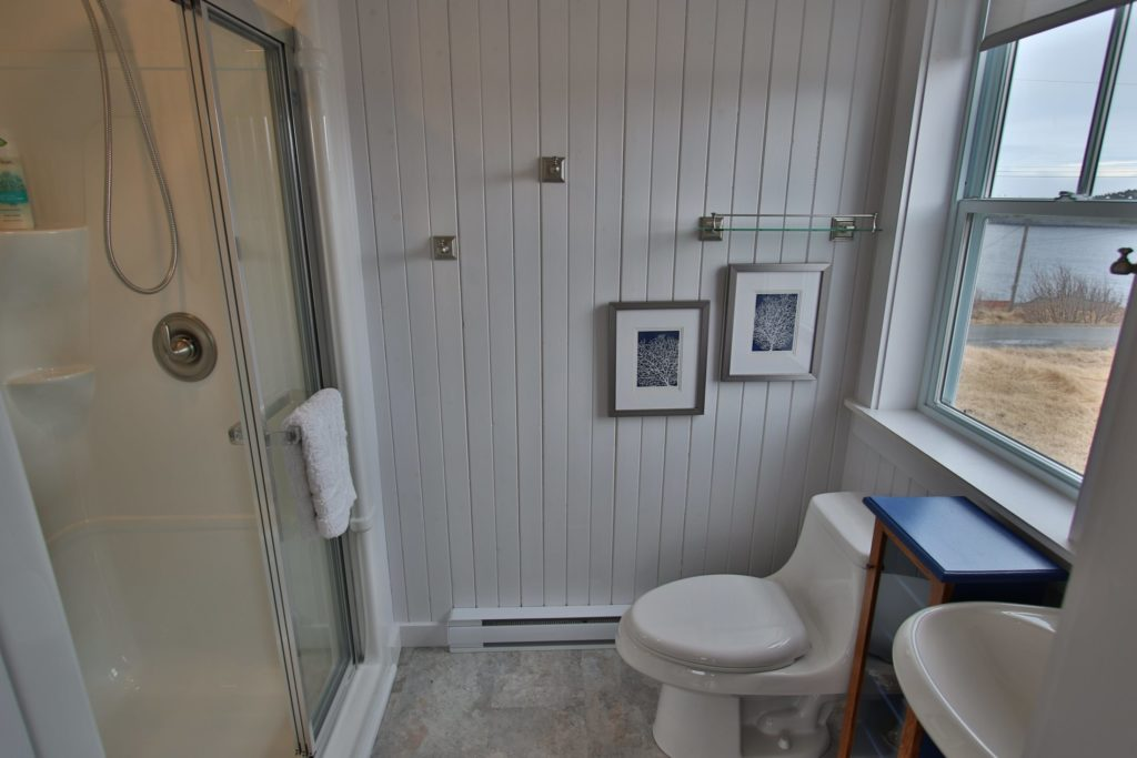A photo of the ensuite bathroom at Blueberry Cottage. White wooden walls with a shower stall on the left and a toilet on the right.